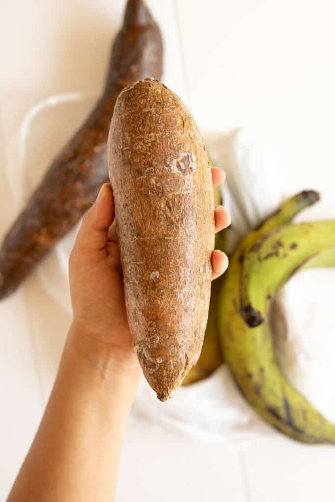 a hand holding taro root